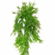 Bambus hænger