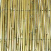 Bambus hegn - Lys