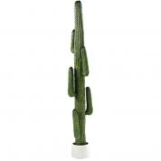 Kaktus stor 2,3m høj
