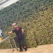 Plantevæg 1x1 meter modul