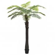 Palmetræ 3,10 meter