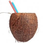 Frisk Kokosnød - købes