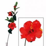 Hibiscus kvist - Rød
