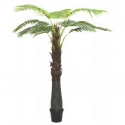 Palmetræ 2,40 meter