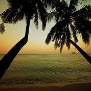 Banner - Solnedgang med palmer 6x2,75m