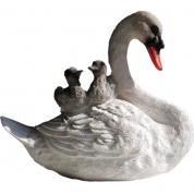 Svanemor med unger