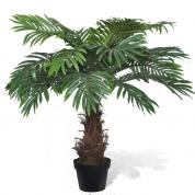 Palmetræ 0,80 meter