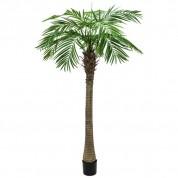 Palmetræ 150 meter M1